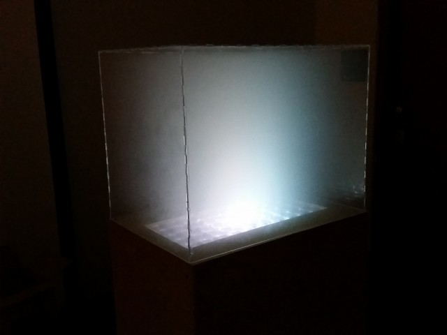 Light Box (8)